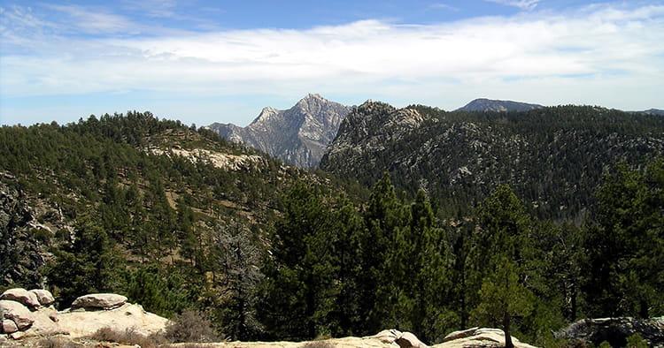 Parque Nacional Sierra San Pedro Mártir